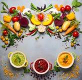 Концепция здоровых овощных супов Стоковые Изображения RF