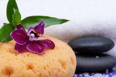 Концепция здоровья спа Естественные ванна пены & губка моря ливня, штабелированные камни базальта, бамбук, цветок орхидеи и соль  стоковые фото