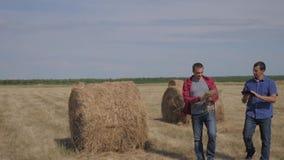Концепция земледелия сыгранности умная обрабатывая землю 2 работника фермеров людей идя изучающ стог сена в поле на цифровом план сток-видео