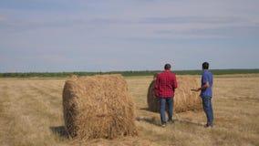 Концепция земледелия сыгранности умная обрабатывая землю 2 работника фермеров людей образа жизни идя изучающ стог сена в поле дал сток-видео