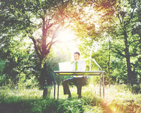 Концепция зеленого цвета леса компьютера бизнесмена работая Стоковые Изображения RF