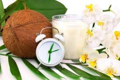 Концепция здравоохранения весны с кокосом, кокосом доит, цветок и cl Стоковая Фотография RF
