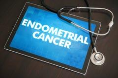Концепция диагноза Endometrial рака (типа рака) медицинская на животиках Стоковая Фотография RF