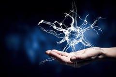 Концепция исследования неврологии стоковая фотография