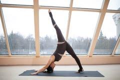 Концепция йоги женщины брюнет практикуя, стоя в представлении svanasana muka adha pada eka перед большими окнами разработка, впол Стоковые Изображения RF