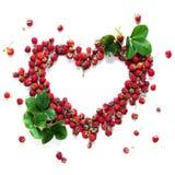 Концепция клубники сердца формы рамки здоровая Стоковое Фото