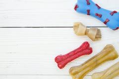 Концепция корма для домашних животных Стоковая Фотография RF