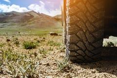 Концепция колеса автомобиля крупного плана offroad Стоковая Фотография