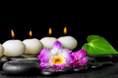 Концепция курорта свечей строки белых, dendrobium цветка орхидеи и g Стоковое Изображение