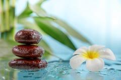 Концепция курорта с свечой, камнем, цветком и бамбуком Стоковое Изображение