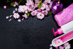 Концепция курорта с цветками миндалины Стоковое Фото