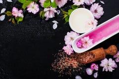 Концепция курорта с цветками миндалины Стоковые Изображения