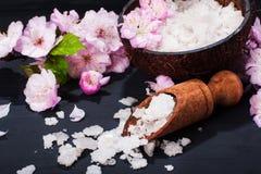 Концепция курорта с цветками миндалины Стоковая Фотография RF
