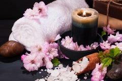 Концепция курорта с цветками миндалины Стоковые Фото