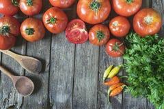 концепция кухни Группа в составе свежие томаты, перцы чилей, parsl Стоковое Изображение RF