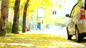 Концепция летних каникулов и образа жизни пешая сток-видео