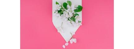 Концепция любовного письма с конвертом и цветками Стоковое Изображение RF