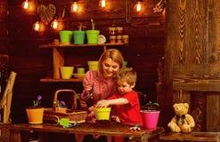 Концепция матери Цветок производства керамических изделий матери и маленького ребенка Мать и сын пересаживают цветок в новом баке стоковое фото
