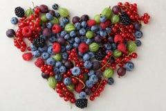 Концепция образа жизни свежих ягод здоровая стоковые изображения rf