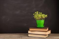 Концепция образования - книги на столе в аудитории Стоковые Фото