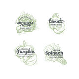 Концепция логотипа овощей Стоковое Фото
