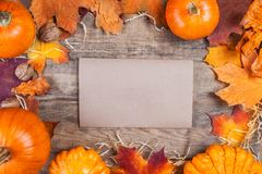 Концепция официальный праздник в США в память первых колонистов Массачусетса - граница или рамка с оранжевыми тыквами Стоковое Изображение RF