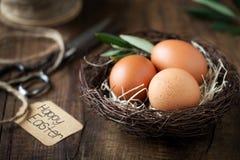 Концепция пасхи с яичками в гнезде Стоковое Фото