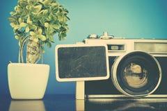 Концепция перемещения и каникул отображает, искусственные зеленое растение и план камеры года сбора винограда на деревянном столе Стоковое Изображение