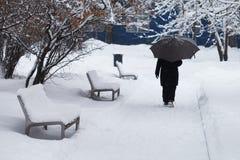 Концепция плохой погоды снежностей Покрытый снег benches, женщина с зонтиком идет через парк зимы Стоковое Изображение RF