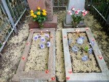 Концепция 2 половины одного целого Путь чествовать покойные родственники стоковые фотографии rf