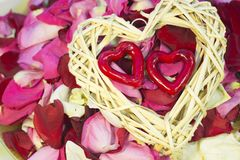 Концепция праздников с лепестками розы Стоковые Фотографии RF