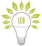 Концепция приведенная энергии лампы ECO Стоковая Фотография