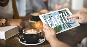 Концепция природных ресурсов окружающей среды экологичности завода земли Стоковое фото RF