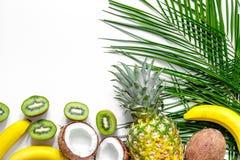 Концепция плодоовощей лета тропических Ананас, киви, банан, кокос на белом copyspace взгляд сверху предпосылки Стоковая Фотография