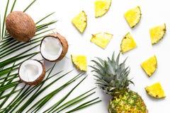 Концепция плодоовощей лета тропических Ананас, кокос и ладонь разветвляют на белом взгляд сверху предпосылки Стоковая Фотография RF