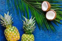 Концепция плодоовощей лета тропических Ананас, кокос и ладонь разветвляют на голубом взгляд сверху предпосылки таблицы Стоковая Фотография