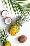 Концепция плодоовощей лета тропических Ананас, кокос и ладонь разветвляют на белом взгляд сверху предпосылки Стоковое Изображение