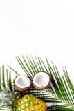 Концепция плодоовощей лета тропических Ананас, кокос и ладонь разветвляют на белом copyspace взгляд сверху предпосылки Стоковые Изображения RF