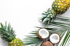 Концепция плодоовощей лета тропических Ананас, cocount и ладонь разветвляют на белом copyspace взгляд сверху предпосылки Стоковое Изображение RF