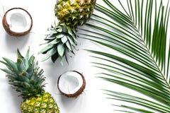 Концепция плодоовощей лета тропических Ананас, cocount и ладонь разветвляют на белом взгляд сверху предпосылки Стоковые Изображения RF