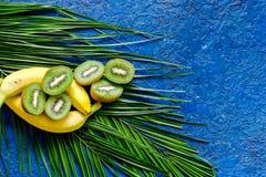 Концепция плодоовощей лета тропических Банан, киви и ладонь разветвляют на голубом copyspace взгляд сверху предпосылки таблицы Стоковое фото RF