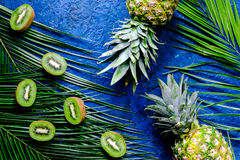 Концепция плодоовощей лета тропических Киви, ананас и ладонь разветвляют на голубом взгляд сверху предпосылки таблицы Стоковое Изображение