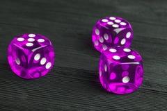 концепция риска - играть кость на черной деревянной предпосылке Играть игру с костью Розовые крены кости казино Свертывать концеп Стоковые Изображения