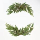 Концепция рождества - обрамите венок с вечнозеленым кипарисом Стоковая Фотография RF