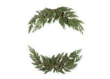 Концепция рождества - обрамите венок с вечнозеленым кипарисом Стоковая Фотография