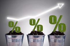 Концепция роста Perentage Стоковое Изображение