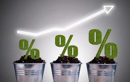 Концепция роста Perentage Стоковое Фото