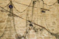 Концепция рыбной ловли Стоковое Фото