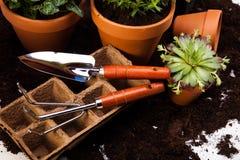 Концепция сада, яркое яркое весеннее время Стоковые Фото