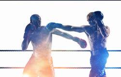 Концепция спорта бокса Мультимедиа Стоковое Изображение
